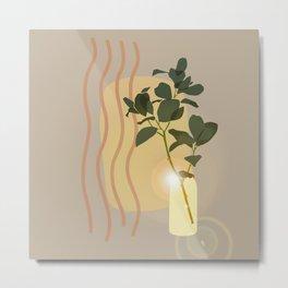 Green Leafed Plant Inside Vase, Sun Reflection Scene Metal Print