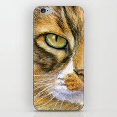 Calico Cat 817 iPhone & iPod Skin