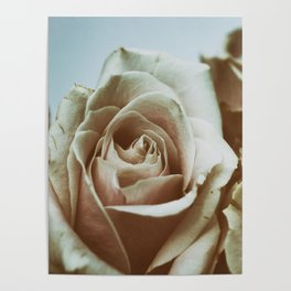 Fading Beauties Poster