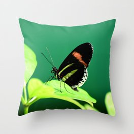 Piano Key Butterfly left facing Throw Pillow
