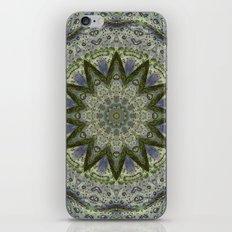 Lilypad Kaleidoscope iPhone & iPod Skin