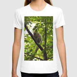 Peek a boo Squirrel T-shirt