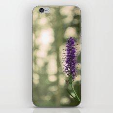 Swizzle Stick iPhone & iPod Skin