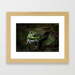 Frog Floating Framed Art Print