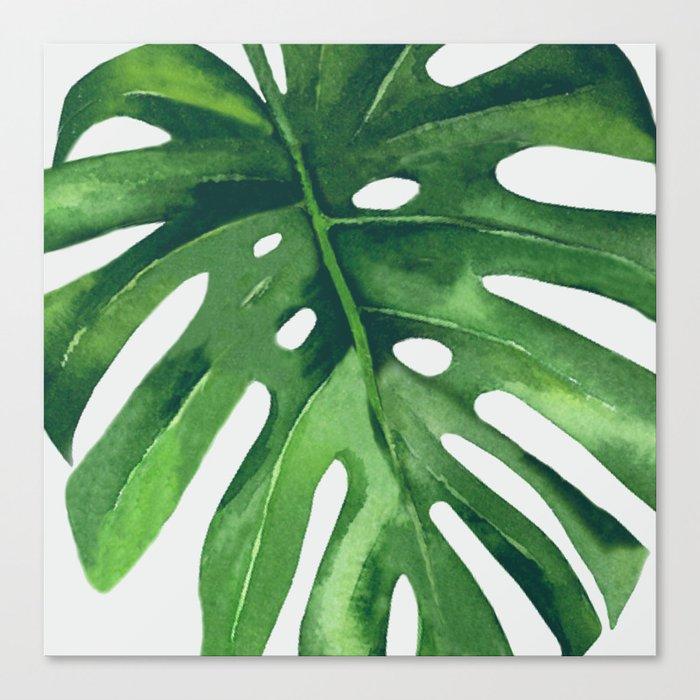 Monstera Leaf Leinwanddruck