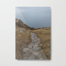 Cliffside Pathway to the Ocean Metal Print