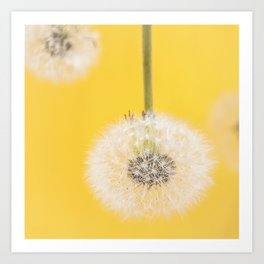 Whishes on yellow Art Print