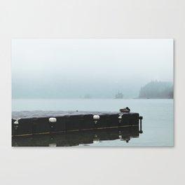 quack Canvas Print