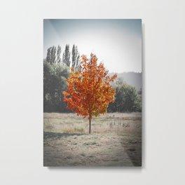 Mmmm... Fall Metal Print
