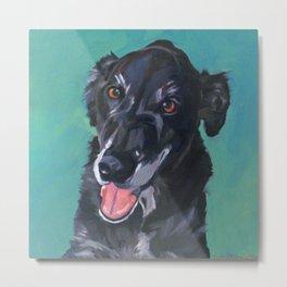 Bob the Black Dog Fine Art Portrait Metal Print