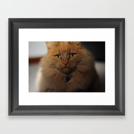 Rusty Bob Framed Art Print
