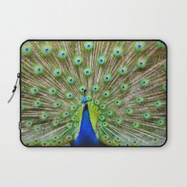 Let me see your Peacock Laptop Sleeve