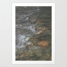 Natural Mosaic 3 Art Print