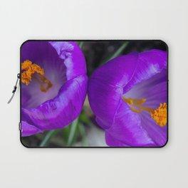 Deep purple and orange crocuses Laptop Sleeve