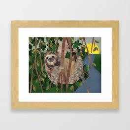 Three Toed Sloth February 2014 Print #2 Framed Art Print