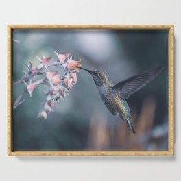 Female Anna's Hummingbird Serving Tray