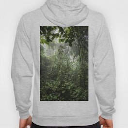 Dark Green Vines Hanging in the Misty Rainforest of Nicaragua at the Chocoyero-El Brujo Nature Reser Hoody