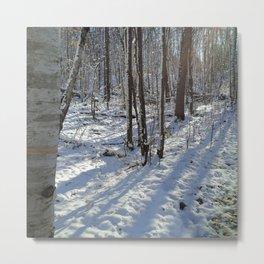 November snow Metal Print