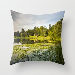 Newton Park Throw Pillow