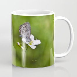 Spring Butterfly Coffee Mug