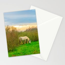 Gypsy Horse Stationery Cards
