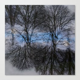 Abstract tress Canvas Print