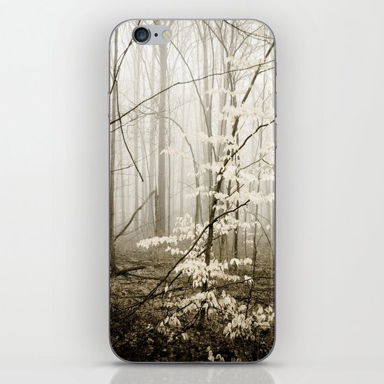 Apparition iPhone & iPod Skin