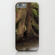 Paradise Creek II Slim Case iPhone 6s