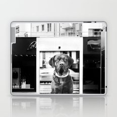 Urban City Dog Laptop & iPad Skin
