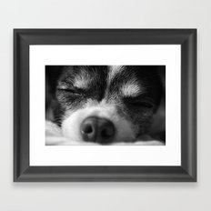 Rufio Sleeping Framed Art Print