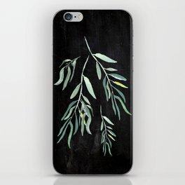 Eucalyptus Branches On Chalkboard II iPhone Skin