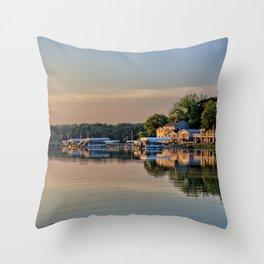 Reflective South Shore Throw Pillow