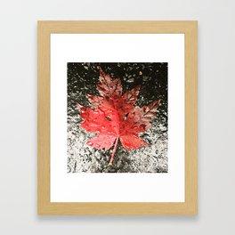 Fall in Asheville Framed Art Print