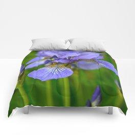 Siberian Iris by Teresa Thompson Comforters