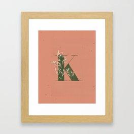 K for Kangaroo Paw Framed Art Print