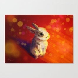 Year of the Rabbit Canvas Print