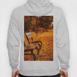 Autumn Walk Hoody
