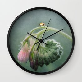 Do Ladybirds sleep at night? Wall Clock