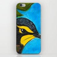 kentucky iPhone & iPod Skins featuring Kentucky Warbler  by Art by Peleegirl