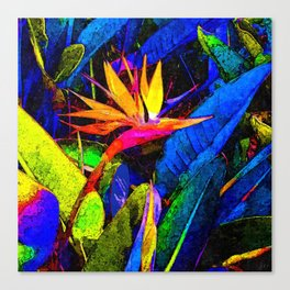 Colorful Bird of Paradise Flower and Leaves Canvas Print