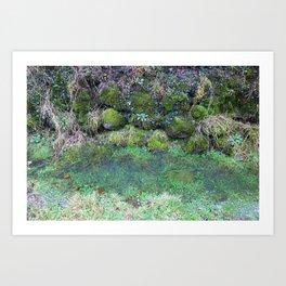 """A corner of """"merveilleux"""" Art Print"""