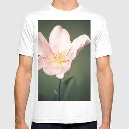 October flower T-shirt