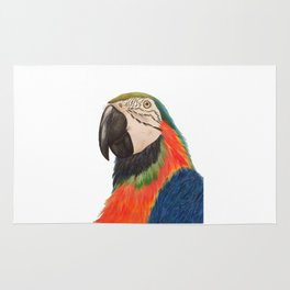 Colorful Parrot Portrait Rug