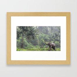 Elephants Love Rain Framed Art Print