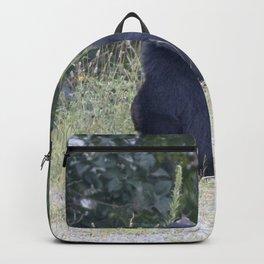 Watercolor Black Bear 23, Drake, Colorado Backpack