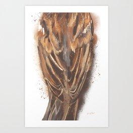 Sparrow's Back Art Print