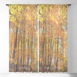 Autumn Hillside Sheer Curtain