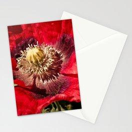 Red Papaver Somniferum Poppy Stationery Cards