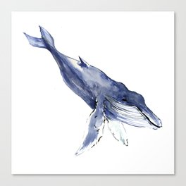 Humpback Whale, swimming whale decor Canvas Print