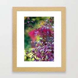Autumn colours Framed Art Print